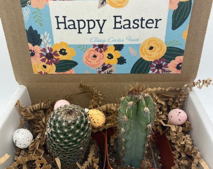 Happy Easter Cactus Box - set of 2