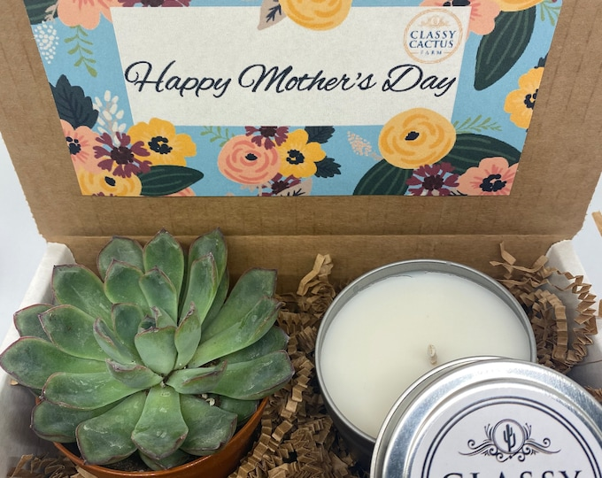 Mother's Day succulent Gift Box and candle set- Cactus Bloom scented candle