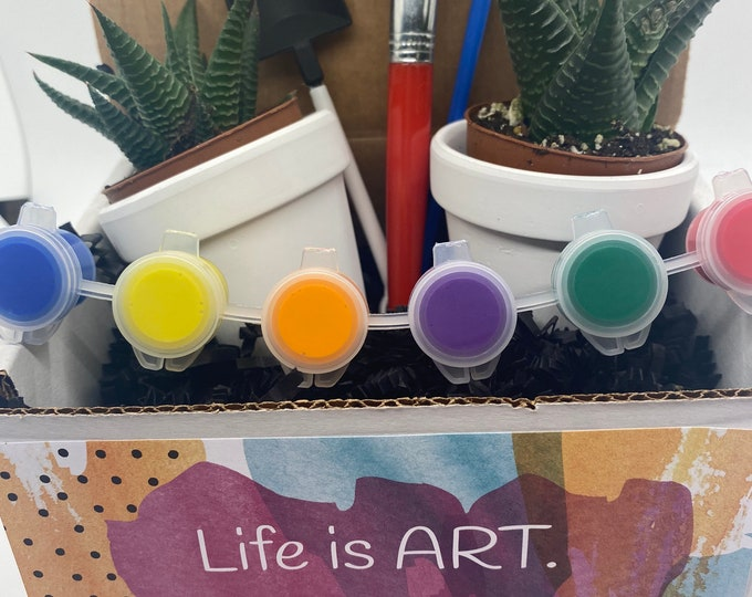 Succulent Planter (set of 2) Gift Box DIY - Life is Art