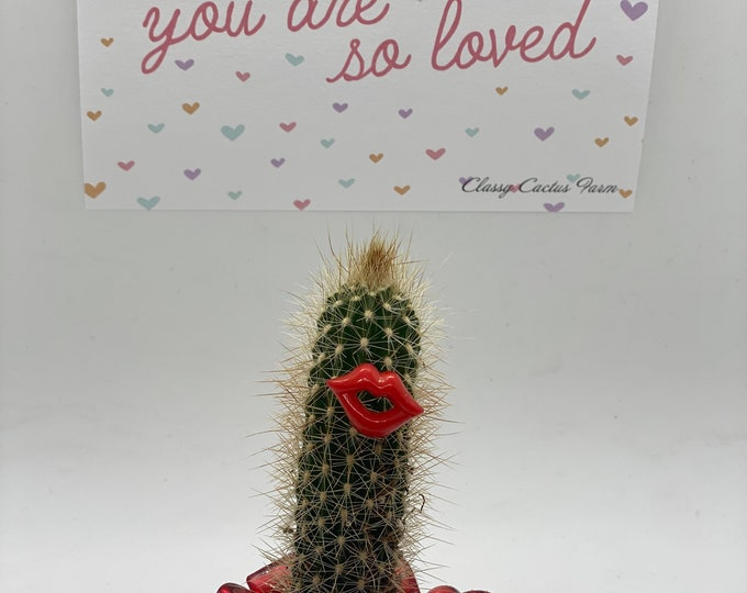 Cactus with lips Gift Box - You are so loved