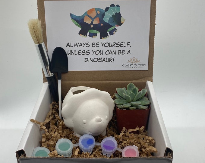 Kids Dinosaur Succulent Gift Box - Be yourself