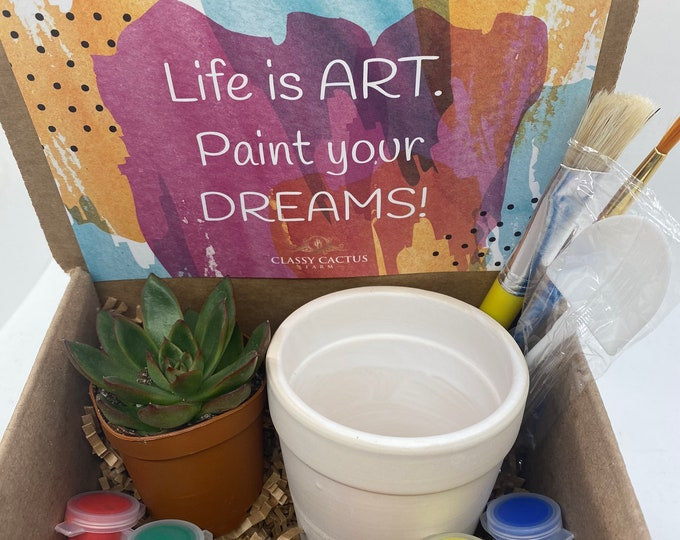 Succulent Planter Gift Box DIY - Life is Art
