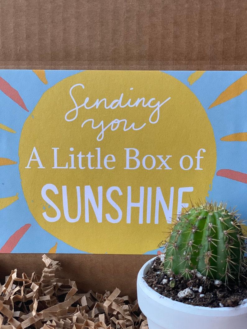 Cactus Sunshine Gift Box