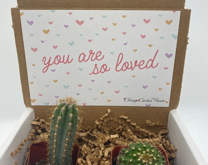 Cactus Gift Box - You are loved (set of 2)
