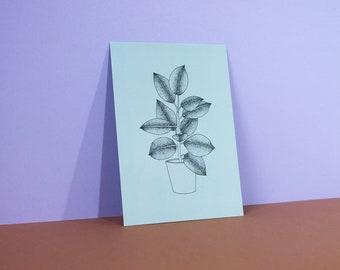 PLANT CARD A6 | ficus elastica - sage