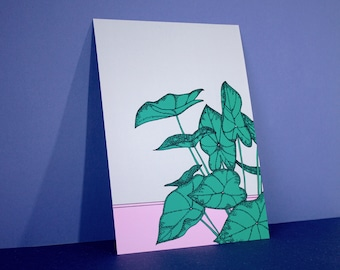 PLANT PRINT A5 | syngonium - pink and beige