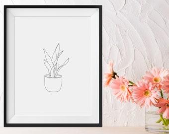 Art Print - Snake Plant