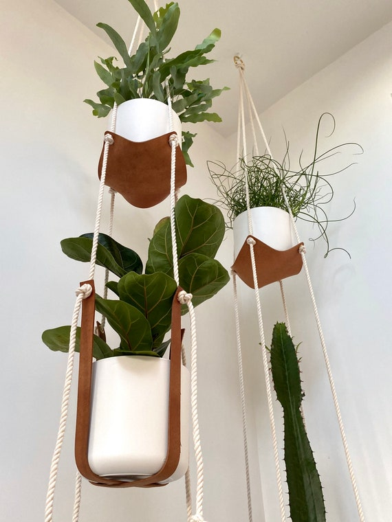 Double Tier Leather Plant Hammock & Harness