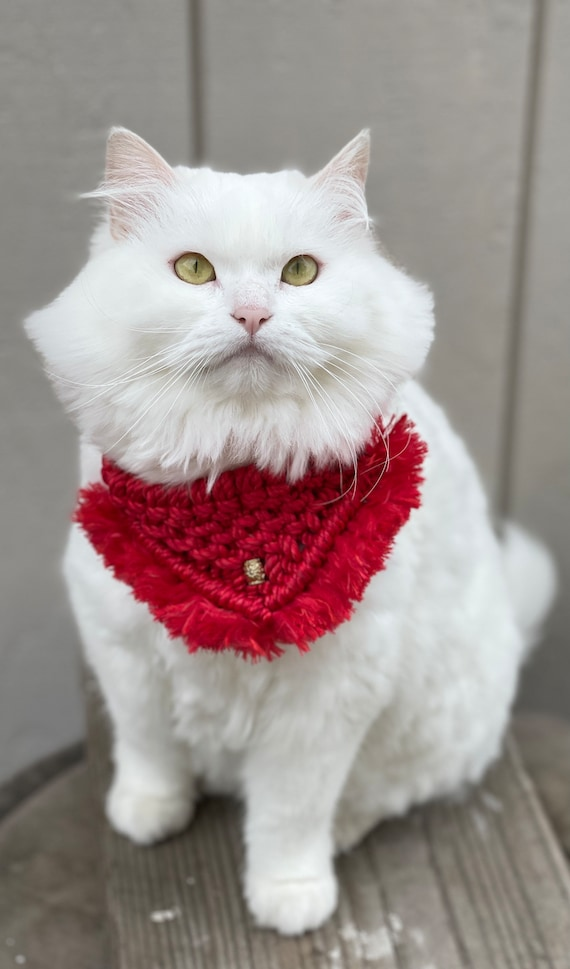 Macrame Pet Bandana, Tie On Cat or Dog Neckerchief, Handwoven Scarf for Kitten and Puppy, Organic Eco-Friendly Supplies Accessory Apparel