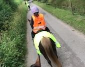Kids Hi-Vis Safety Vest Personalised Riding Vest Equine Riding Vest Yellow Hi-Vis Orange Hi-Vis Children's Safety Vest Horse Riding Unisex