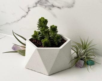 White cement hexagon geometric concrete planter pot- Indoor and outdoor cactus, succulent, or house plant holder