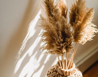 Extra fluffy pampasgrass I dried flower decoration in boho style I pampasgrass stem