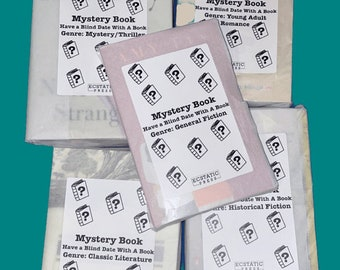 Mystery Book , Have A Blind Date With A Book , Book Lover Gifts , Gift For Bookworm , Mystery Item , Surprise Book, Summer Reading Ideas