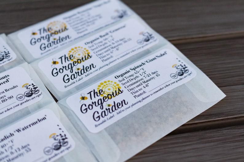 Seeds Organic Ruby Queen Beet Seeds Beta vulgaris Non-GMO Heirloom Vegetable Garden 20 20