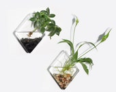Set of 2 Wall Hanging Glass Plant Terrarium Diamond Shape Glass Vase for Air Plant Perfect for Hydroponic Plants Home Garden Wedding Decor