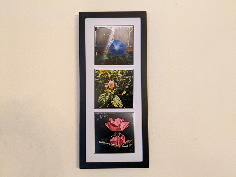 Glowing Flowers Photo Triptych image 0