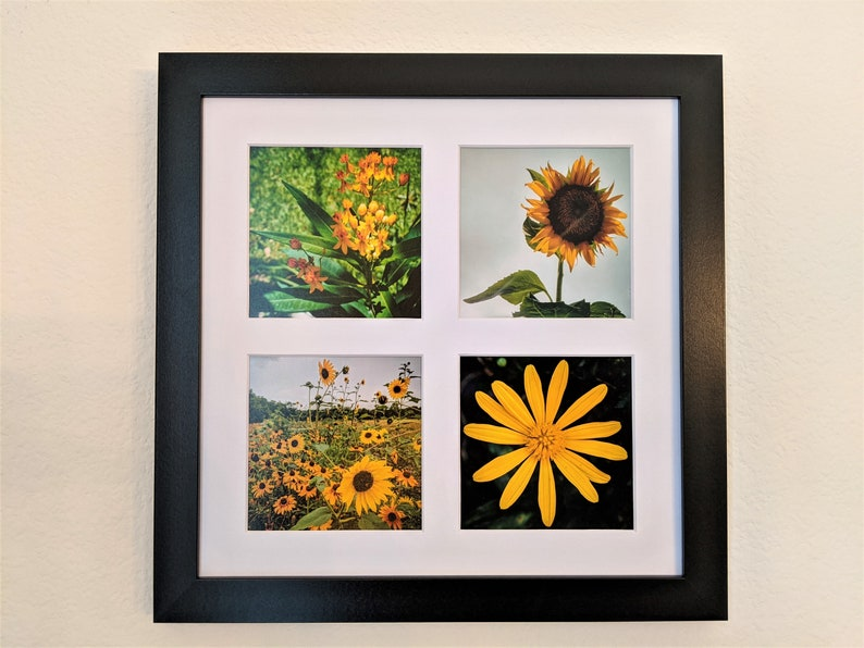 Yellow Flowers Photo Tetraptych image 0