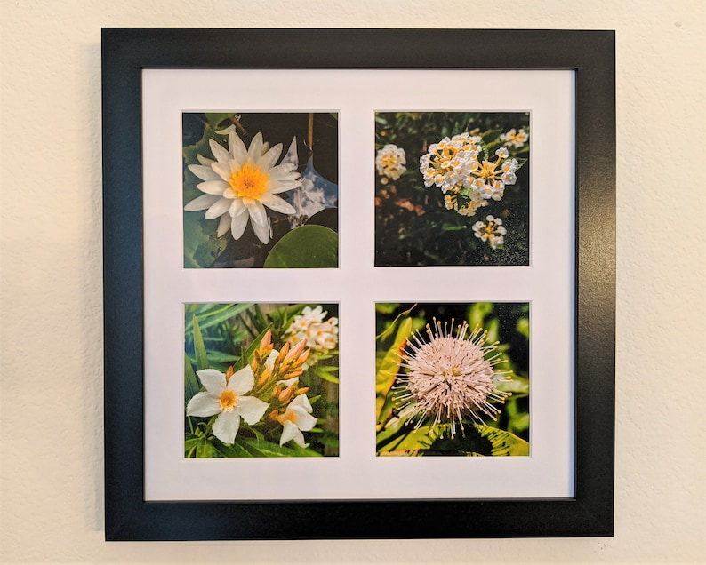 White & Yellow Flowers Photo Tetraptych image 0