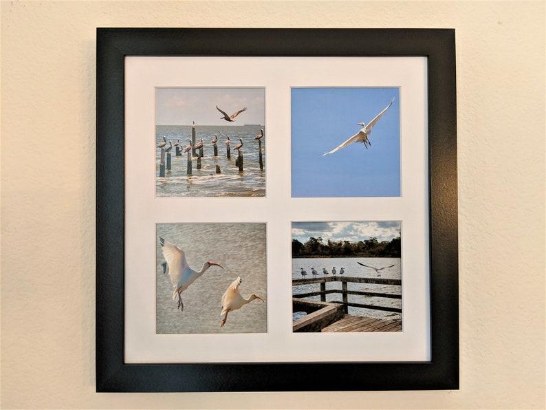 Waterbirds in Flight Photo Tetraptych image 0