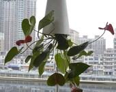 Inverted Sky Garden Hanging Pot, Upside Down Planter, Flowerpot Storage Basket