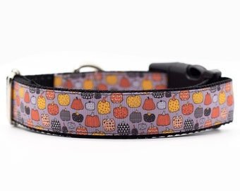 Holiday Collar Ready to Ship Dog Collar RTS Pumpkin Collar Fall Dog Collar Halloween Dog Collar Size small