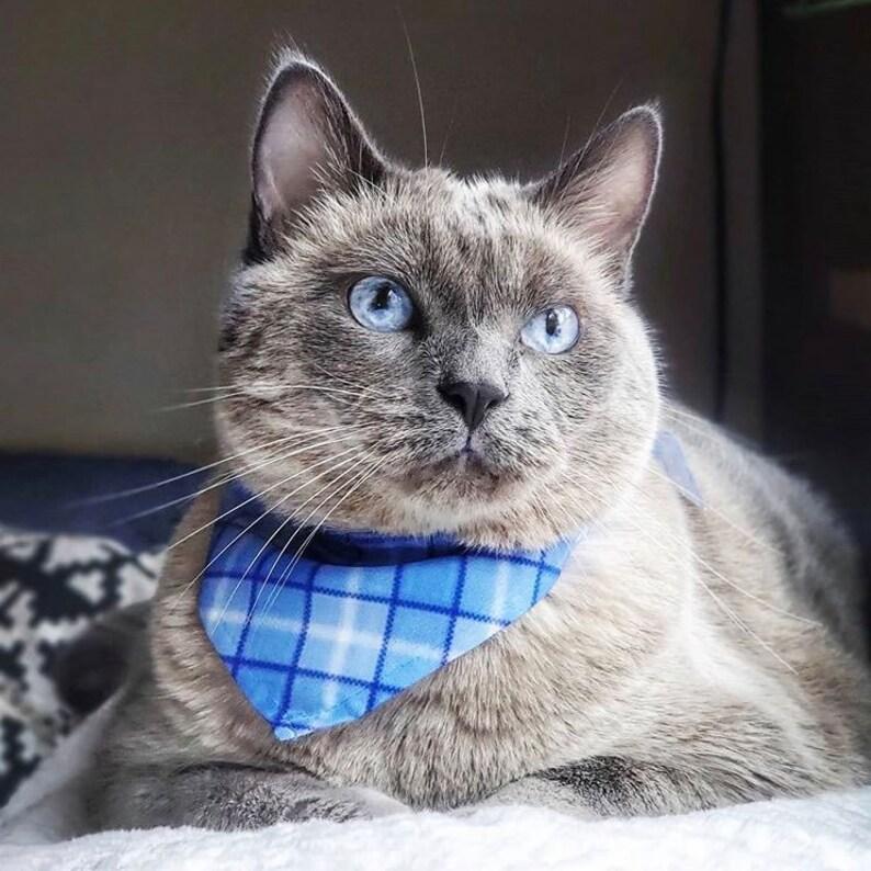 Blue Plaid Pet Bandana Cat or Dog Use