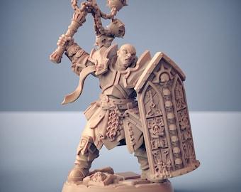 D&D Miniature - Brotherhood Templar C