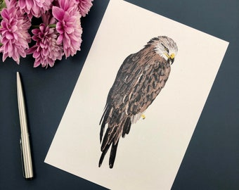 Red Kite, Bird of Prey Illustration, A5 Print, Optional A4 Mount, Recycled Paper, Eco Gift, Gifts for Gardeners, Walkers, Bird Watchers
