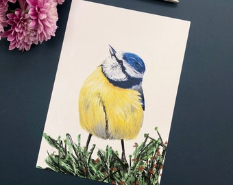 Blue Tit, Garden Bird Illustration, A5 Print, Optional A4 Mount,  Recycled Paper, Eco Gift, Gifts for Gardeners, Bird Watchers