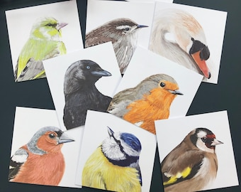 Illustrated Bird Cards, Blue Tit, Greenfinch, Goldfinch, Chaffinch, Mute Swan, Robin, Wren, Jackdaw, Blank Wildlife Notecards
