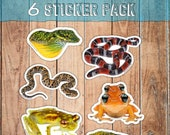 Conservation Sticker Pack, Wildlife photo, reptile and amphibian stickers, rare animals, vinyl waterbottle decor, frog snake lizard stickers