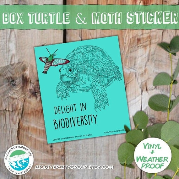 Box Turtle and Moth Sticker, Delight in Biodiversity