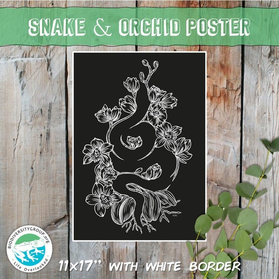 Snake and Orchid Art Poster