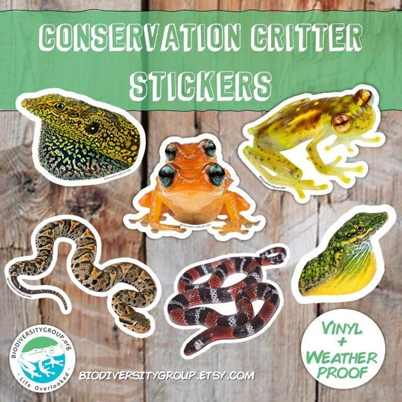 Reptile & Frog Sticker Pack