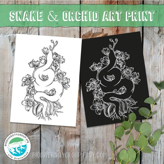 Snake and Orchid Art Print