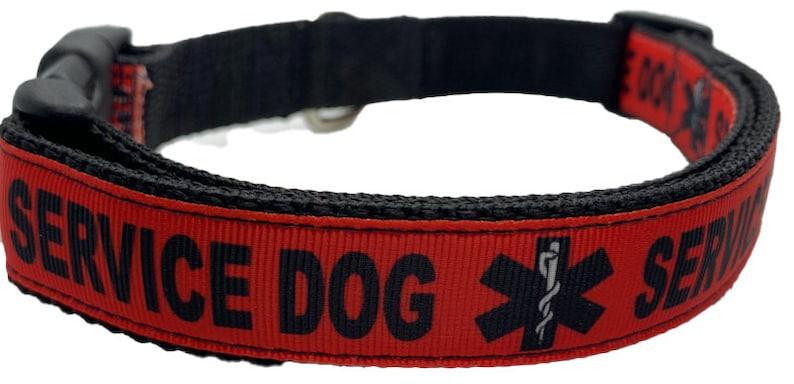 Service Dog 1 Width Collar and Matching Service Dog Leash Cute dog collar