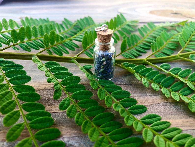 Calm In A Bottle Natural Lavender Jar Pendant