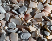 Brown Sea Glass Authentic from Florida Beaches Real Tumbled Beach Glass Bulk 5-300 Pieces Seaglass FREE SHIPPING