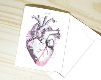 Anatomical Heart Greeting Card   Morbid Anatomy Art   Custom Foil   Vintage Medical Illustration   Gift for Doctors / Nurses, Graduate Gifts