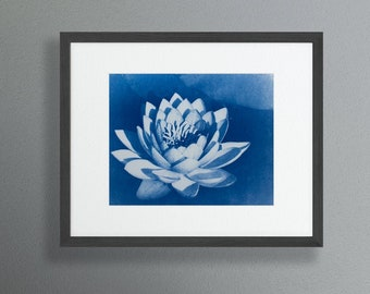 White Water Lily Print, Cyanotype Photograph, 8x10 Wall Print - Brighten up your living space with this calming artwork