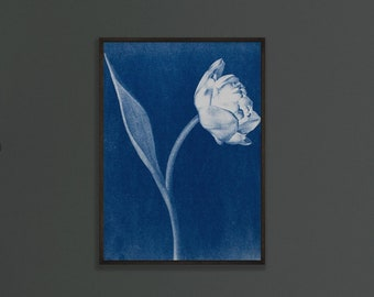 Double tulip cyanotype, 5x7 blue print, unframed art print, gift for mum