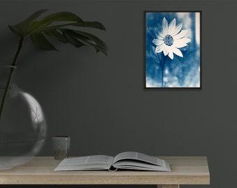 "Mini sunflower 5x7"" blue print, unframed cyanotype"