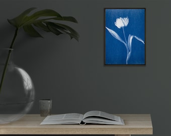 """Blue tulip, 5x7"""" cyanotype print, mother's day gift."""