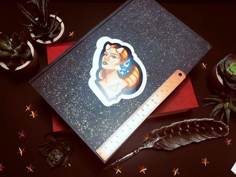 Glossy capricorn  horoscope sticker zodiac sticker