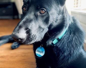 Resin Dog Tags | Beach Ocean Resin Dog ID Tags | Pet ID Tags | Epoxy ID Tags