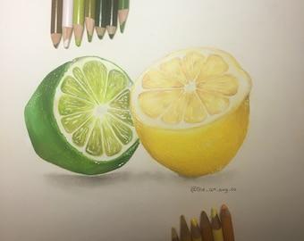 Print: Lemon Lime Realism Colored Pencil Artwork