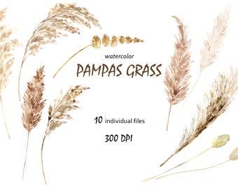 Pampas Grass Clipart Watercolor Boho Neutral Colors Digital Clip Art PNG Bohemian Wedding Invitation