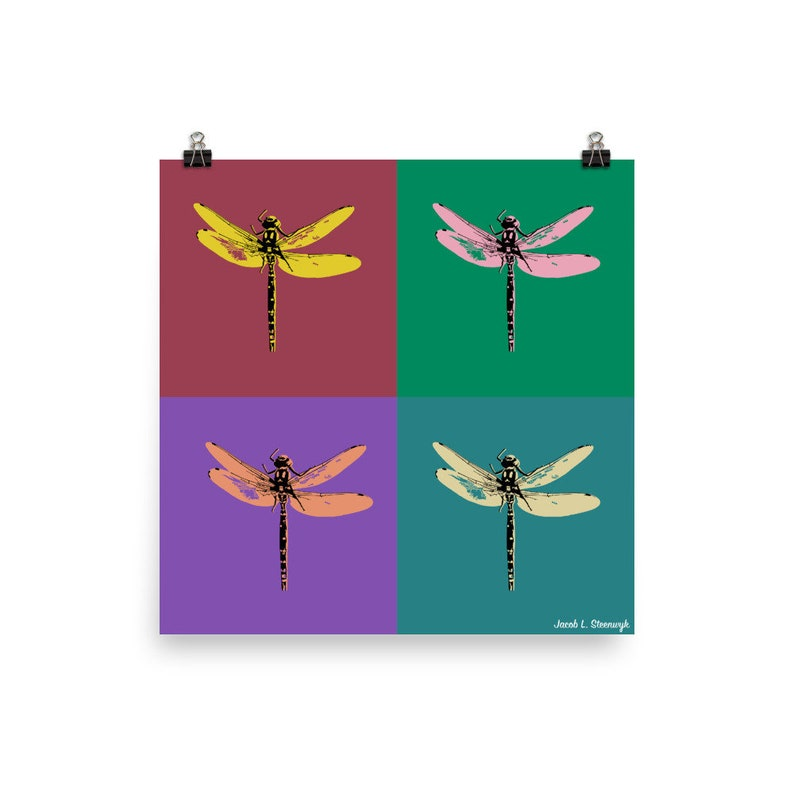 Dragonfly  Poster image 0
