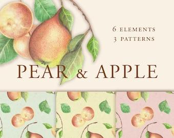 Pear & Apple Fruits Clipart, Autumn Seamless Patterns, Fall Fruits Patterns, Fall Fruit Clipart, Fall Seamless Digital Paper