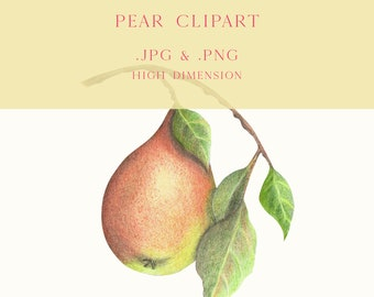Autumn pear clipart, Pear fruit png, Pear jpg, Watercolor Pear Picture, Pear poster printable, Fruit digital print, Fruit painting digital